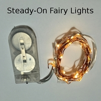 Warm White Fairy Lights - Copper or Silver Wire